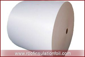 biodegradable coated paper manufacturers